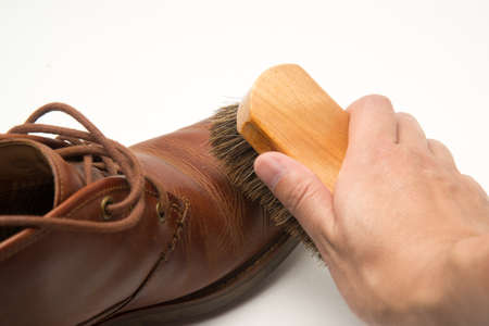 to polish: shoe polish