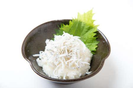 shirasu daikon