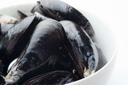 isolated raw mussel 免版税图像