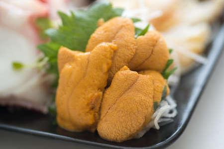 sea urchin sashimi Imagens