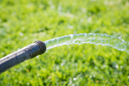 watering lawn with hose Imagens