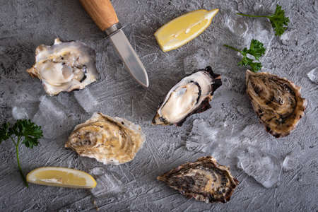 raw oyster with knife image