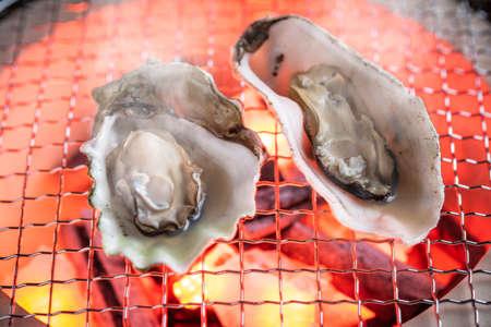 grilled oyster on japanese shichirin grill Standard-Bild