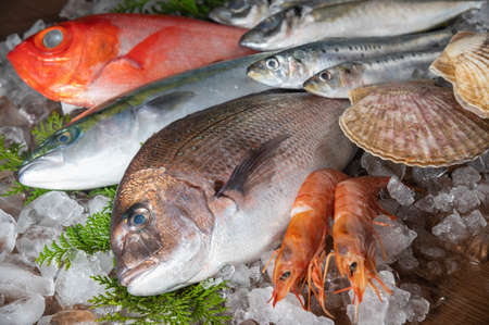 japanese fresh fishes and crustacean on ice