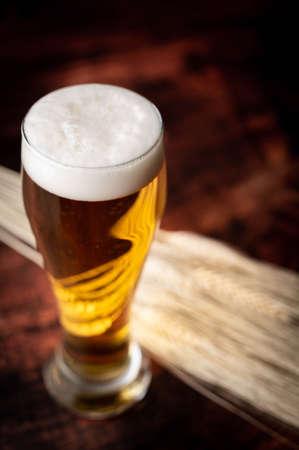 beer in tap with bunch of barley Foto de archivo