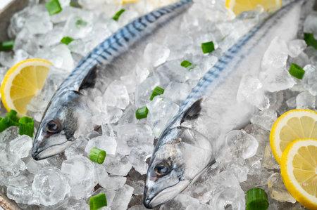 fresh mackerel on crushed ice with lemon