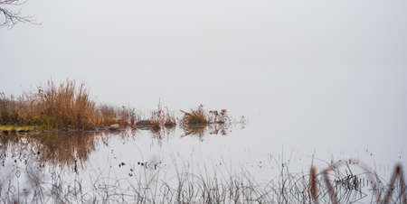 stillness: Scrub, rocks, and stones sit mirrored amidst the stillness of fog-veiled, waters in November, on a lake in Ontario, Canada.