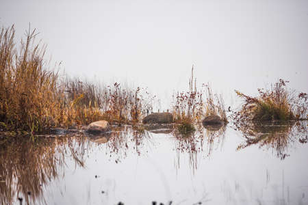lakeside: Small rocks like islands on the lakeside in fog at daybreak. Stock Photo