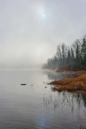 enveloped: Reflections on water of forest with dense fog with diffused bright sunlight on Ottawa River.  Rocks, trees enveloped by fog, bright diffusion, mid-morning sunrise.