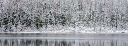 subdued: Winter Mirage on the lake.  Like a mirror, still waters reflect the forests next to it.  A light dusting of snow under subdued light of grey November sky makes for beautiful waterfront forest. Stock Photo