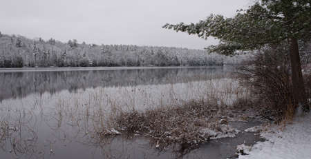 subdued: Still waters reflect waterfront forests.  Light snow under subdued lead grey overcast winter sky makes beautiful waterfront forest.