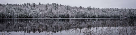 subdued: Panoramic winter woods reflection on the lake.  Like a mirror, still waters reflect the forests next to it.  Light snow under subdued overcast November sky. Waterfront forest.