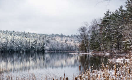 subdued: Winter forest reflections.  Mirage on a yet unfrozen lake.  Still waters reflect winter forests.  Light snow under subdued overcast grey November sky.  Reflections of waterfront forest mirrored on the lake.