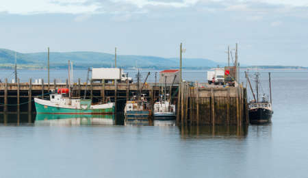 spring tide: Fishing boats in the harbour at low tide in Digby, Nova Scotia.  Nova Scotia late spring afternoon with evening approaching.   Boats tied up in low tide, in for the day.  Sunshine on calm coastal water.