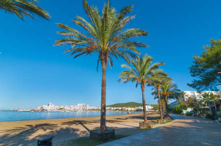 mid morning: Mid morning sun, walk along the beach near the city.  Warm sunny day along the waters edge in Ibiza, St Antoni de Portmany Balearic Islands, Spain - city by the bay, row of palms lines the beach. Editorial