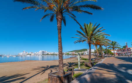 mid morning: Mid morning sun on Ibiza waterfront.  Warm sunny day along the beach in St Antoni de Portmany Balearic Islands, Spain.  city by the bay, a row of palms lines the beach in Ibiza.