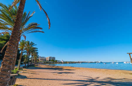 mid morning: Mid morning sun, walk along beach near the city.  Rows of palm trees line the beach, sunny day along the waters edge in Ibiza, St Antoni de Portmany Balearic Islands, Spain.