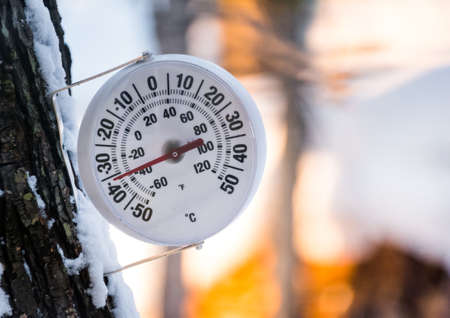 Its too cold outside.  Round analogue thermometer mounted to a tree outside displays the temperature at minus 36 degrees Celsius.