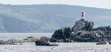 A lone light station atop an outcropping of rocks in Bona Vista town proper.  Gulls and cormorants numbering the hundreds gather on the rocks and in the air in Newfoundland, Canada.