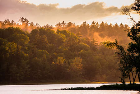 Mist rises in a forest along a lake after a heavy thunderstorm passes through the area.  Late afternoon sun breaks through under clouds & creates dramatic orange color in an  Ontario, lakeside forest. Stock Photo