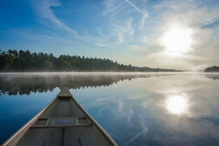 swampy: Canoe trip in the morning.  Brilliant and bright mid-summer sunshine morning, paddling a canoe in the middle of quiet, calm and peaceful Corry lake.