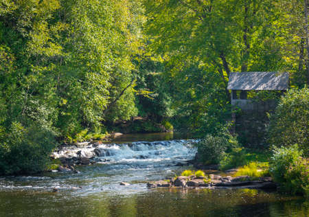 treed: Old brick wall and watermill shed next to small woodland waterfall.   Summer stream, rapids waterfall of babbling river.  Scenic freshwater flow.