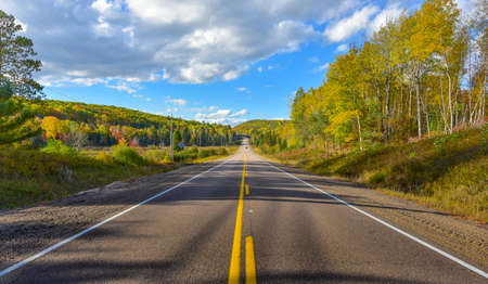 blacktop: Sunny road to anywhere, single point perspective down a country highway in summer.  Warm day to drive or travel to anywhere. Stock Photo
