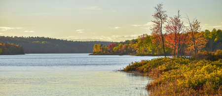 Late summer warm day on a lake near the woods edge.   Seasonal colors along forests edge, emboldened by late afternoon, golden sunlight. Stock Photo