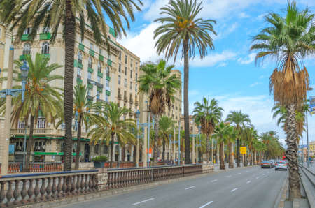 Cars in the street, warm late afternoon in Barcelona.  Palm tree-lined street with apartment & condo buildings with waterfront addresses.  People meet at a at cafe across the street.
