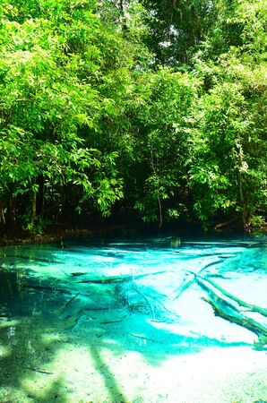 emerald pool paradise in Thailand photo