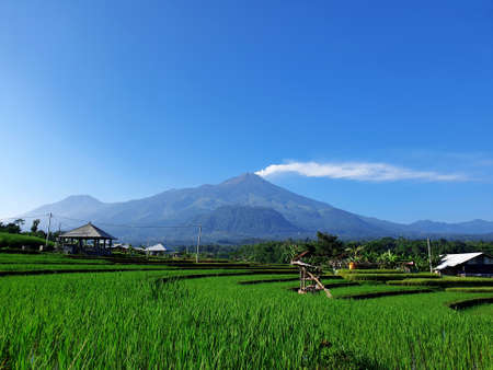 Eruption of Mount ArjunaArjuno-Welirang with rice paddies epic view