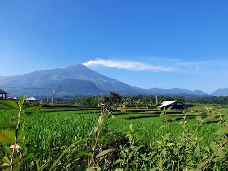 Eruption of Mount Arjuna/Arjuno-Welirang with rice paddies epic view Banco de Imagens - 129796199
