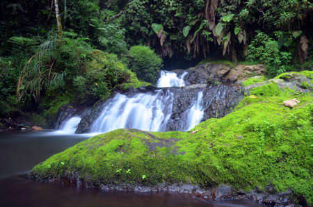 Waterfall In Forest | Coban Trisula, Malang, East Java, Indonesia