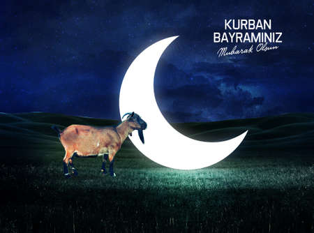 Eid al adha a goat in front of the bright moon social media background