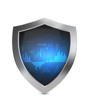 economy shield protection
