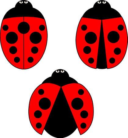 A set of ladybirds, view from above Ilustração