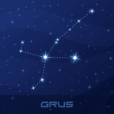 Constellation Grus, Crane, night star sky