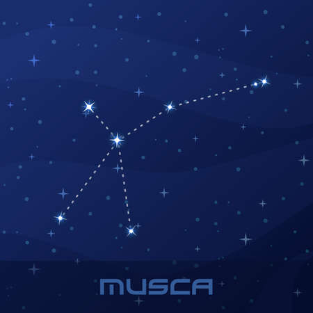 Constellation Musca, Fly, night star sky