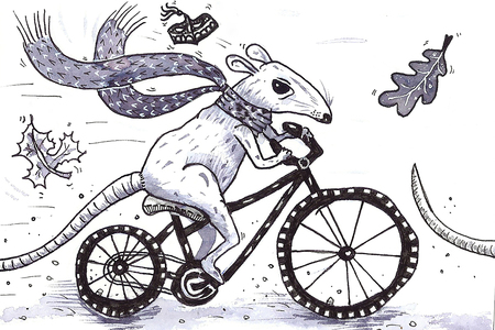 rat on the bike Stock Photo
