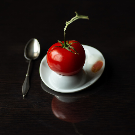 a bright red tomato on a branch hatched from an egg on dark background