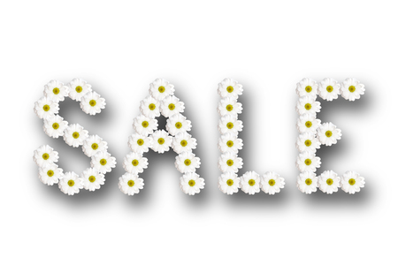 inscription sale lined with chamomile flowers with shadow on a white background