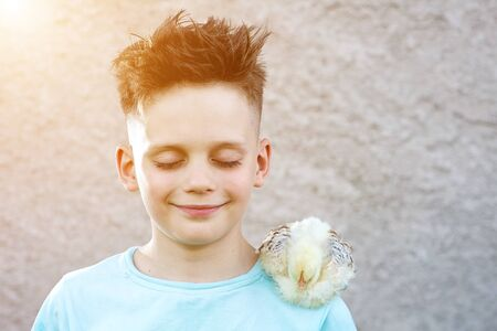 a boy in a blue t-shirt with a fluffy chicken closed his eyes and dream on a blurred background. Stock Photo