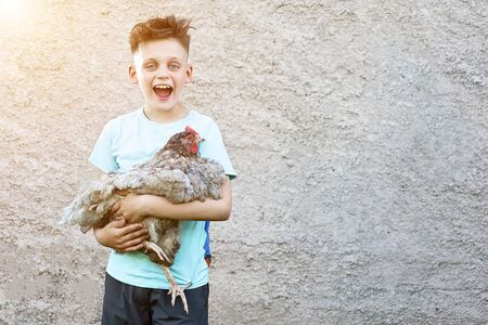 happy boy in blue t-shirt holding chicken and laughing on blurred background