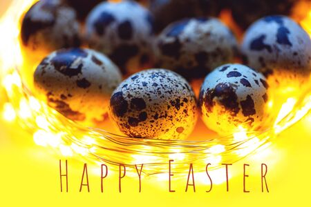 Easter card. Eggs quail and feathers in the garland. Banner 免版税图像