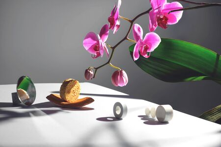 Geometric composition with orchid flower and circles of different materials. The concept is on a gray background. Stockfoto - 147371511