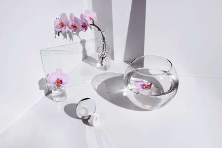 Geometric angular composition with phalaenopsis orchid flowers, different glass objects and shadows on a white background. Imagens
