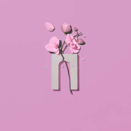 Composition with a broken arch and amethist orchid flower on a pink background.