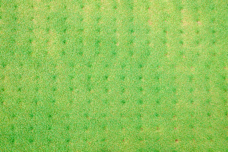 green golf close up and corring green pattern