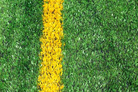 Green football field Reklamní fotografie