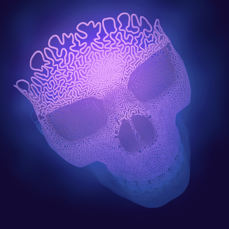 Computer generated abstract plastic wire skull on a colored background surrounded by blue mist. Geometric modern pattern. 3d rendering Imagens